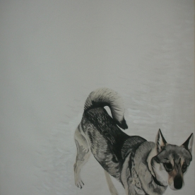 The best place - The dog 2010 145 x 180 cm, gouache on paper